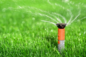 lawn-watered