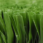 X-Sports green synthetic turf sample