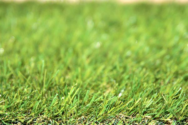 Classic 30 artificial grass - 01