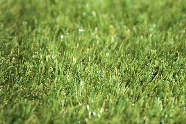 Classic 30 artificial grass - 02