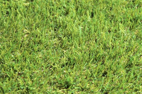 Classic 30 artificial grass - 03