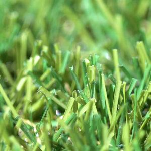 Classic 30 artificial grass - 05