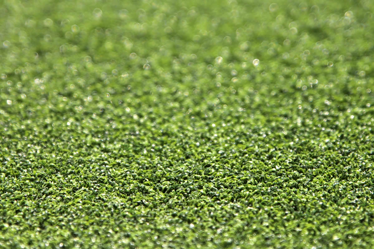 Hole in One Artificial Grass 04