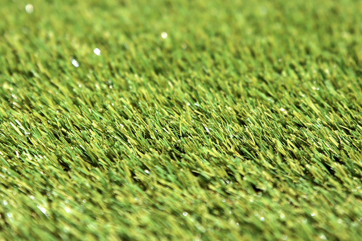 W Spec 30 Artificial Grass 02