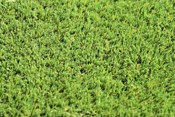 W Spec 30 Artificial Grass 03