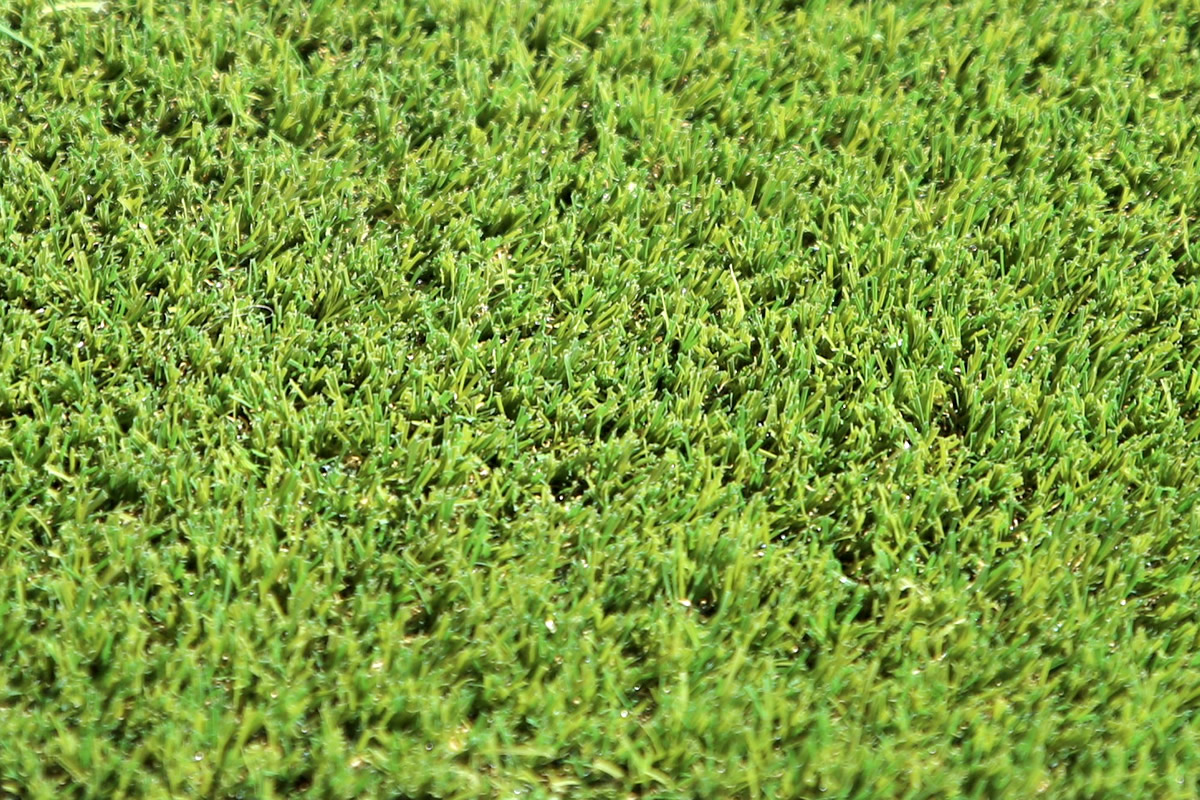 W Spec 30 Artificial Grass 03