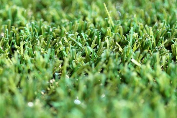 W Spec 30 Artificial Grass 05