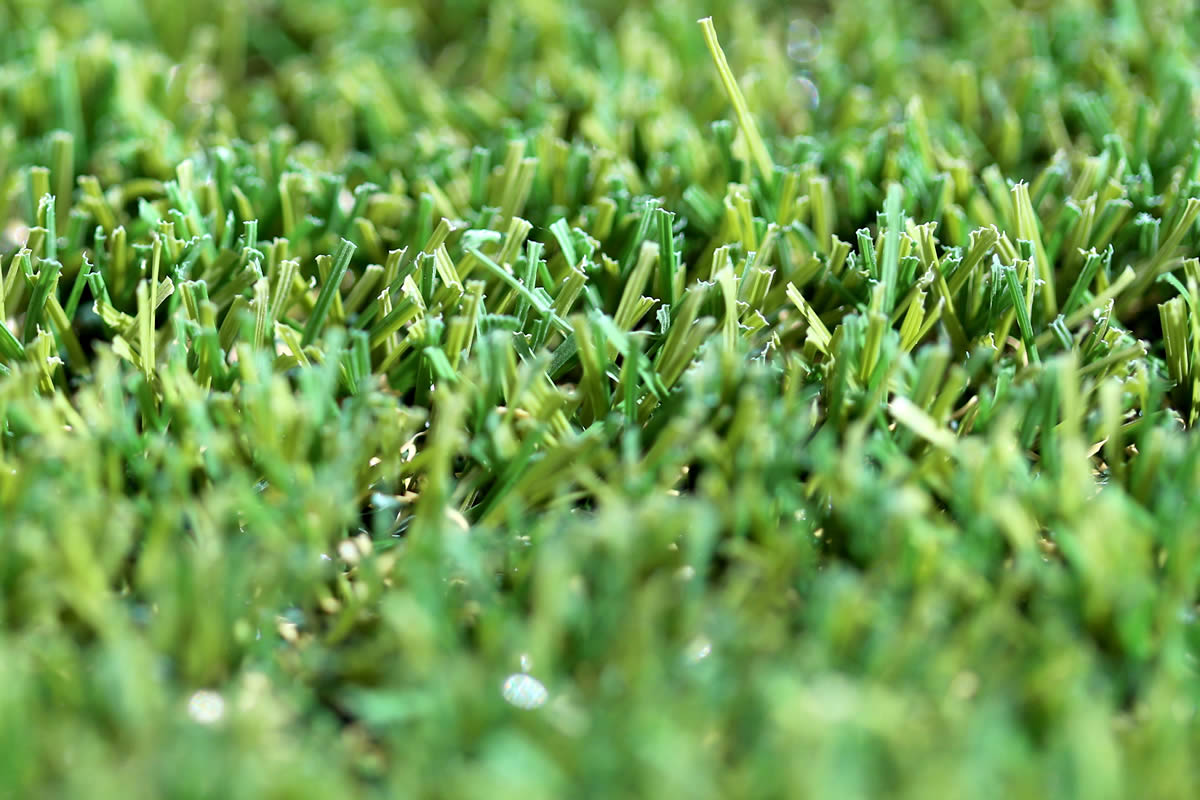 W Spec 30 Artificial Grass 05