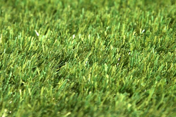 W Spec 40 Artificial Grass 02