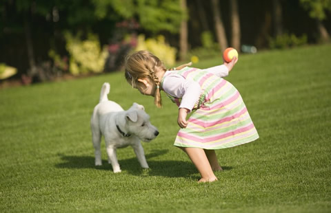 The best kid and pet friendly artificial grass