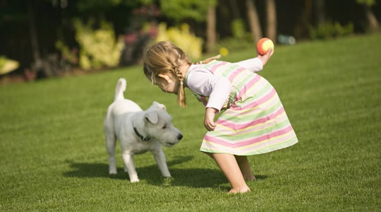 Artificial grass - great for kids