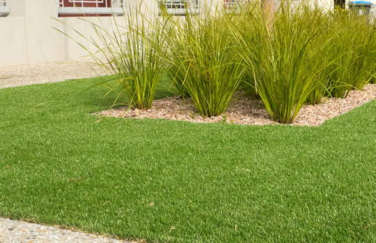 Artificial turf that looks great!